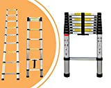 Leogreen - Telescopic ladder,...